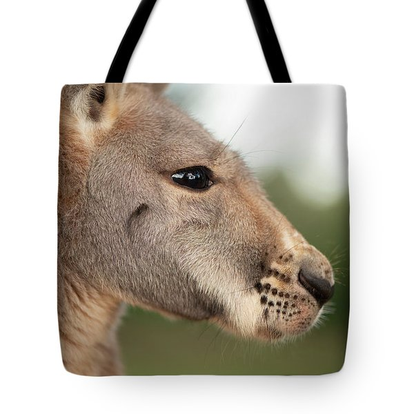 Tote Bag featuring the photograph Kangaroo Outside During The Day Time. by Rob D Imagery