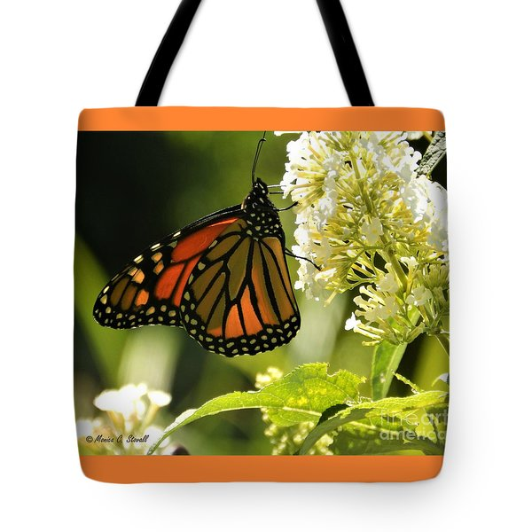 M White Flowers Collection No. W12 - Monarch Butterfly Sipping Nectar Tote Bag