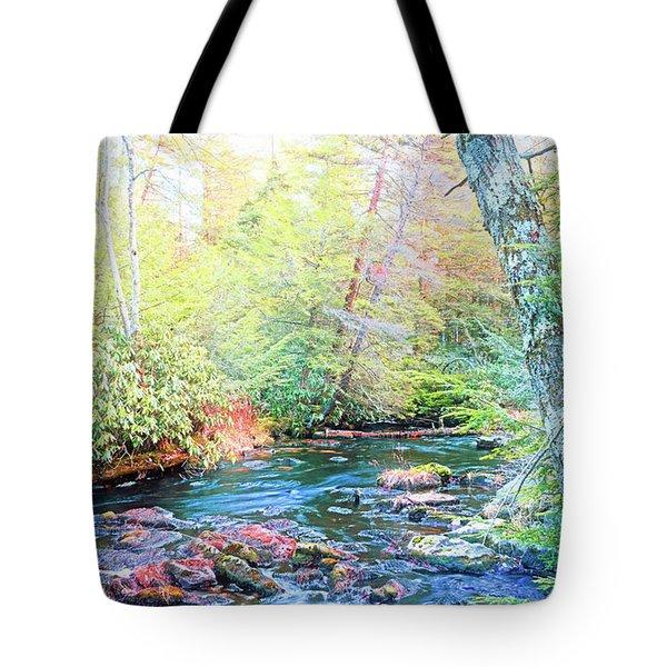 Pocono Mountain Stream, Pennsylvania Tote Bag