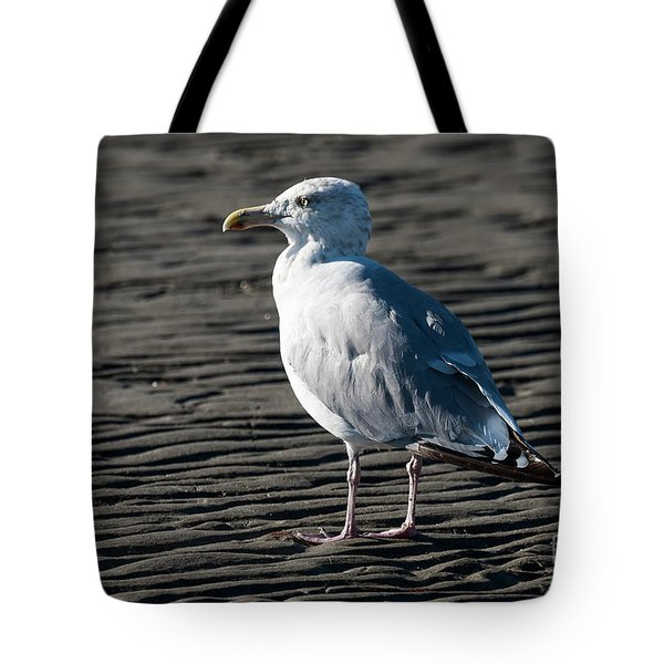 Tote Bag featuring the photograph Seagull On Beach by Michael D Miller