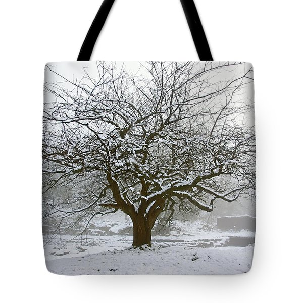 30/01/19  Rivington.  Japanese Pool. Snow Clad Tree. Tote Bag