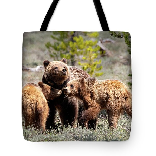 399 And Cubs Tote Bag