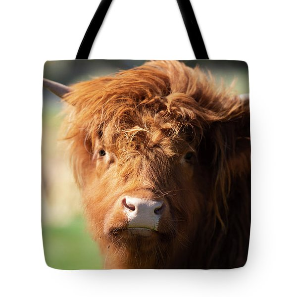 Highland Cow On The Farm Tote Bag