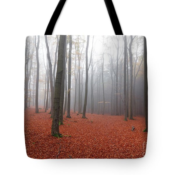 Beech Forest In Autumn Tote Bag