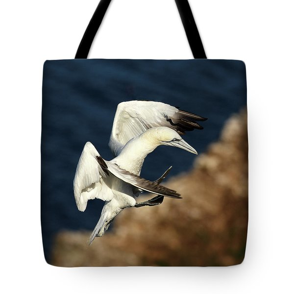 Northern Gannet Tote Bag