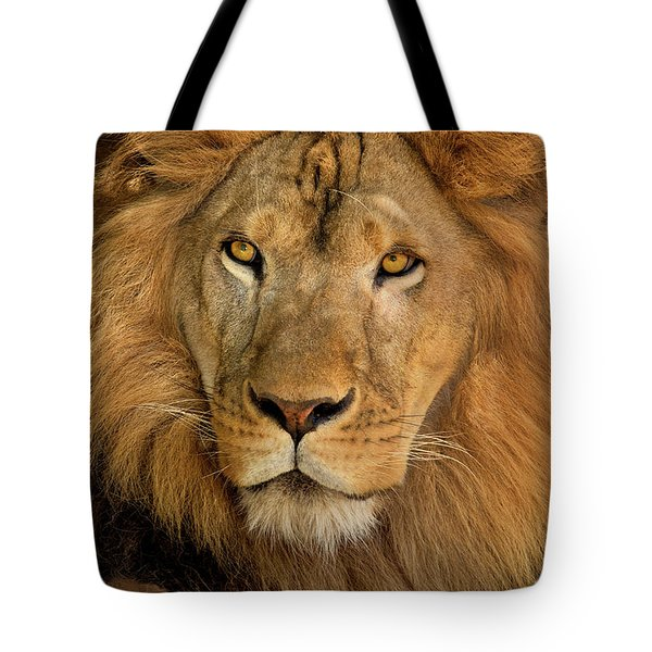 Tote Bag featuring the photograph 656250006 African Lion Panthera Leo Wildlife Rescue by Dave Welling