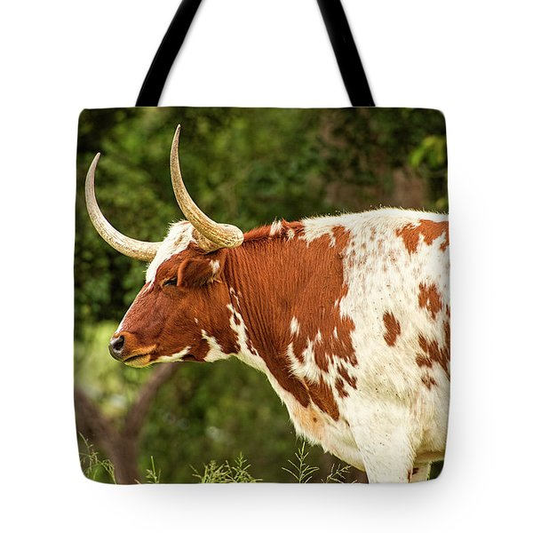 Tote Bag featuring the photograph Longhorn Bull In The Paddock by Rob D Imagery