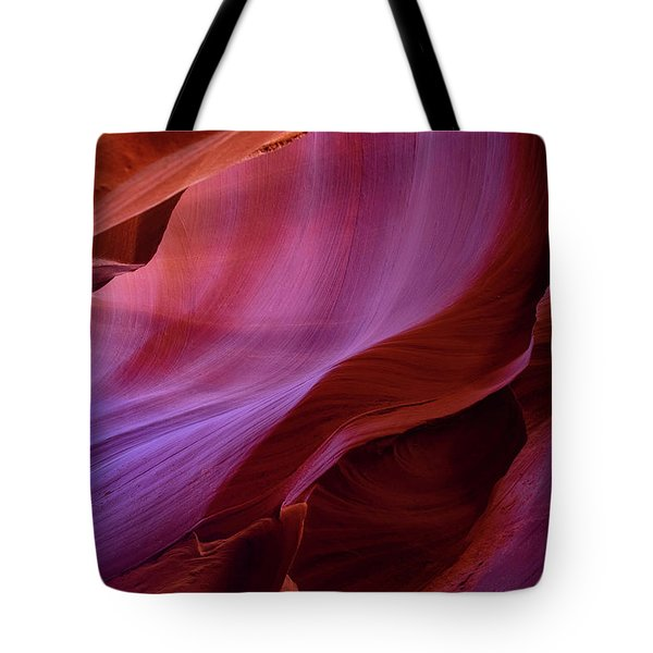 The Body's Earth  Tote Bag