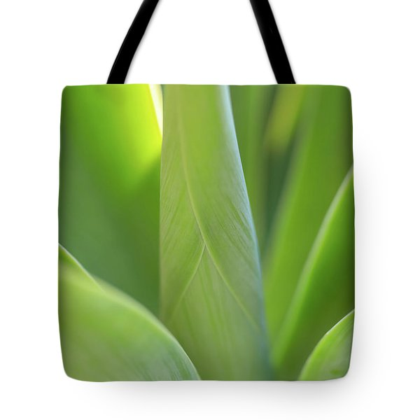 A Bouquet Of Leaves Tote Bag