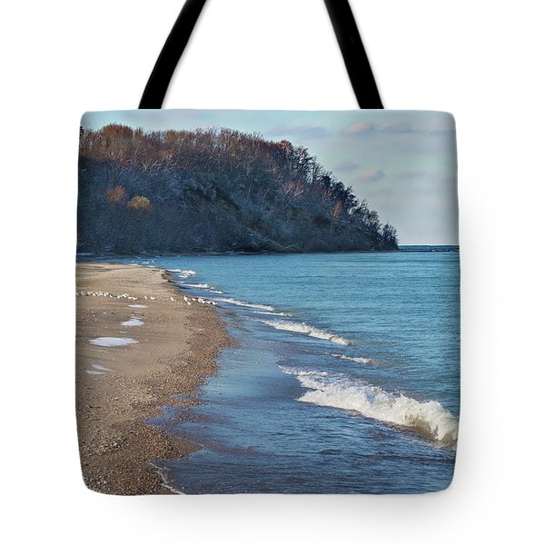 Tote Bag featuring the photograph A Brisk Morning by Kim Hojnacki