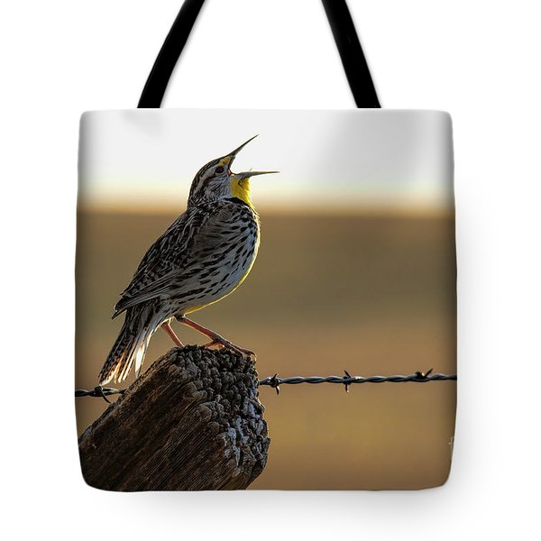 A Colorado Good Morning Tote Bag