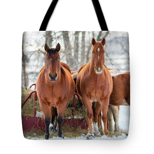 A Couple Of Horses Tote Bag