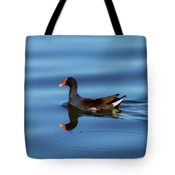 A Day For Reflection Tote Bag