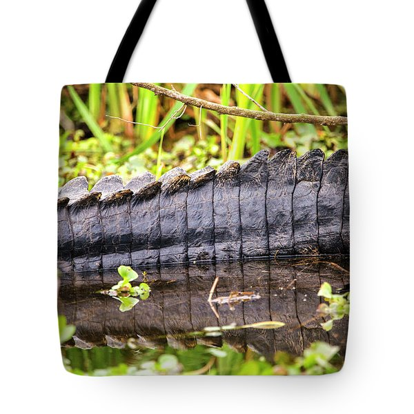 A Dinosaur Tale Tote Bag