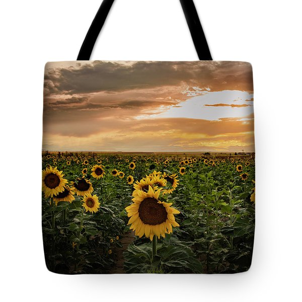 A Field Of Sunflowers At Sunset Tote Bag
