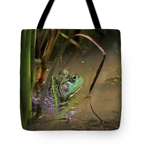 A Frog Waits Tote Bag