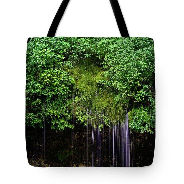 A Hidden Gem Tote Bag