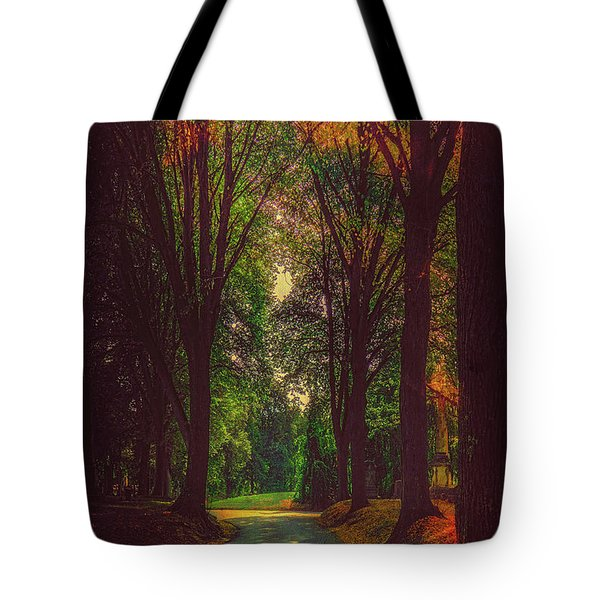 Tote Bag featuring the photograph A Moody Pathway by Chris Lord