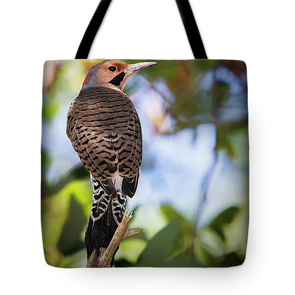 A Northern Flicker Tote Bag