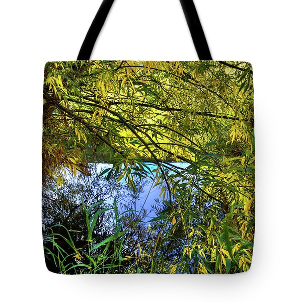 Tote Bag featuring the photograph A Peek At The River by David Patterson