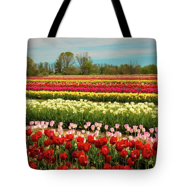 A Piece Of Holland In Jersey Tote Bag