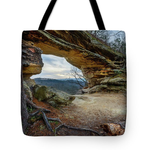 A Portal Through Time Tote Bag