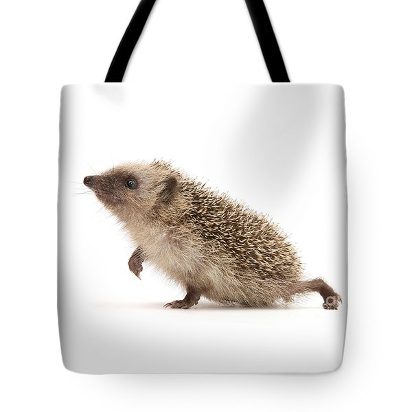 Tote Bag featuring the photograph A Prickly Problem by Warren Photographic