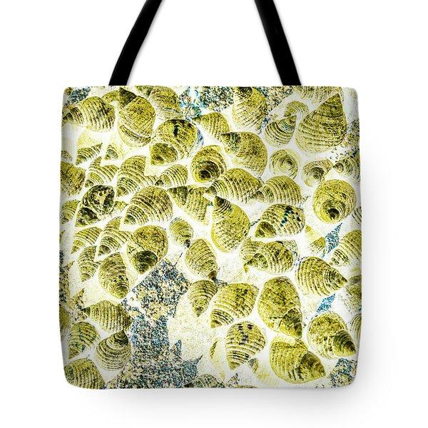 A Seashell Abstract Tote Bag
