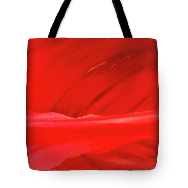 A Single Tulip Petal Tote Bag