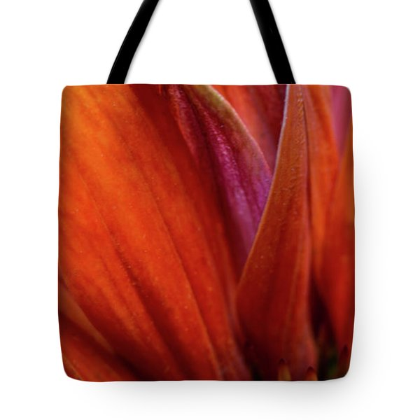 Tote Bag featuring the photograph A Slice From The Cone by Dale Kincaid