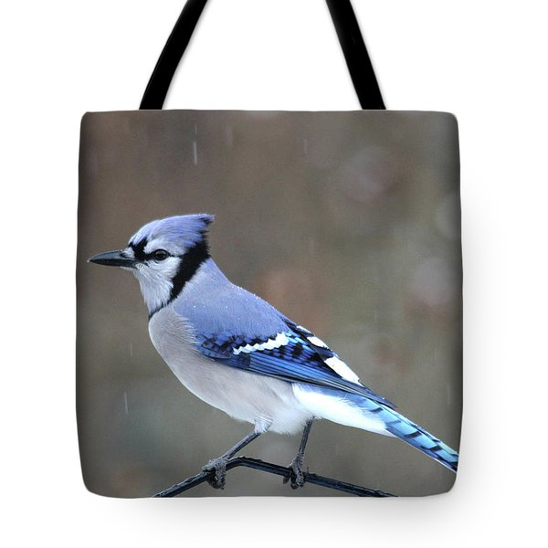 A Snowy Day With Blue Jay Tote Bag
