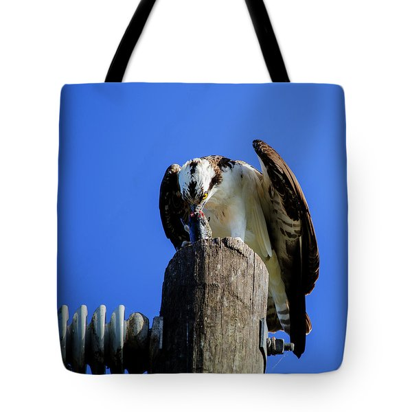A Tasty Lunch Tote Bag