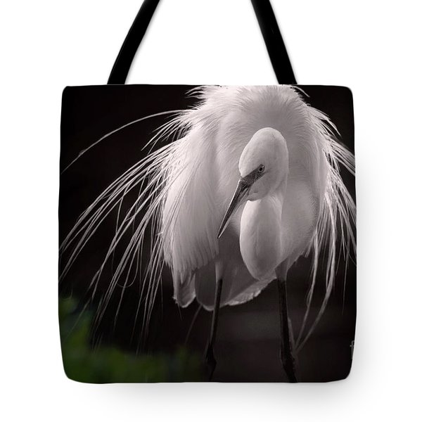 A Touch Of Class - Great Egret With Plumage Tote Bag