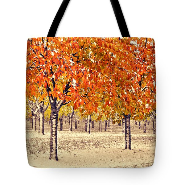 A Touch Of Winter Tote Bag