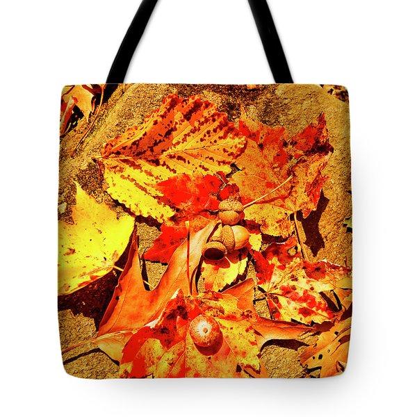 Acorns Fall Maple Oak Leaves Tote Bag