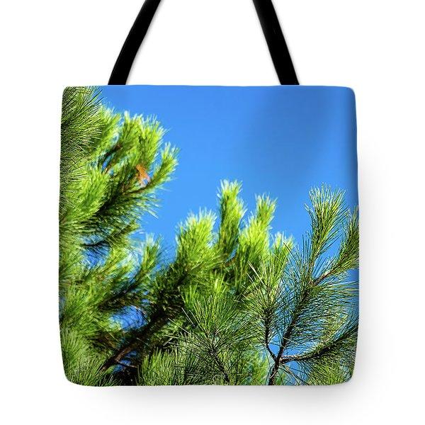 Adriatic Pine Against Blue Sky  Tote Bag