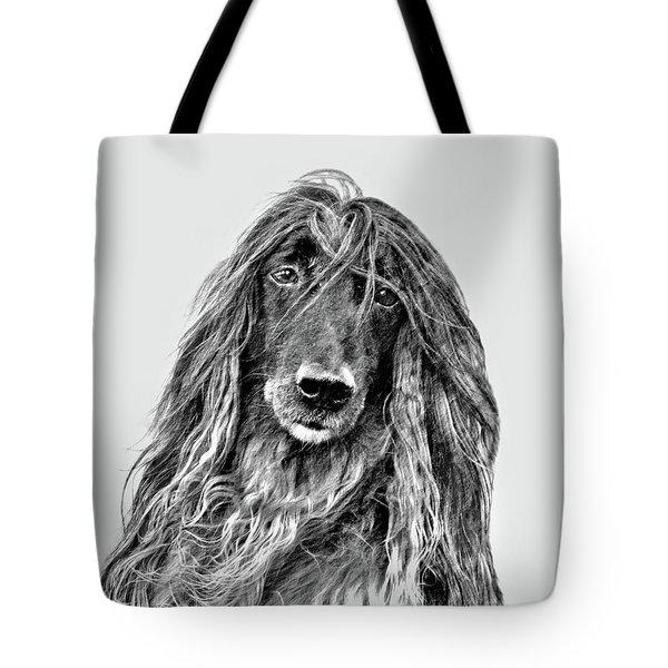 Afghan Hound 3 Tote Bag