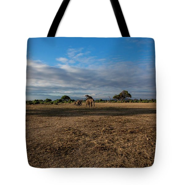 Tote Bag featuring the photograph Amboseli by Thomas Kallmeyer