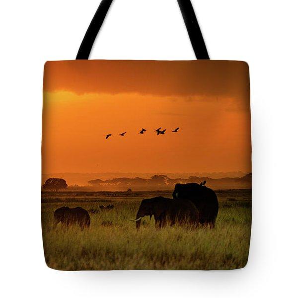 African Elephants Walking At Golden Sunrise Tote Bag