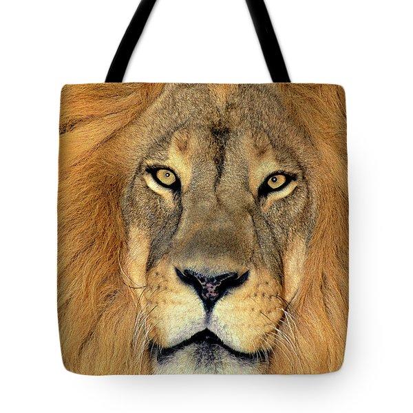 African Lion Portrait Wildlife Rescue Tote Bag