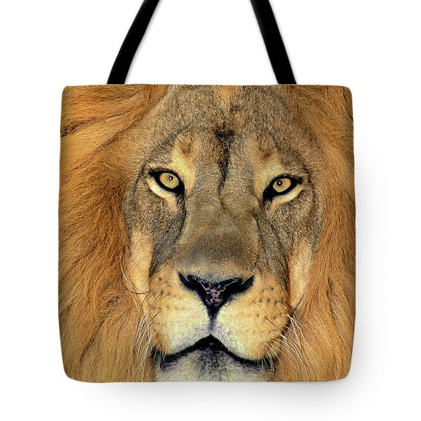 Tote Bag featuring the photograph African Lion Portrait Wildlife Rescue by Dave Welling