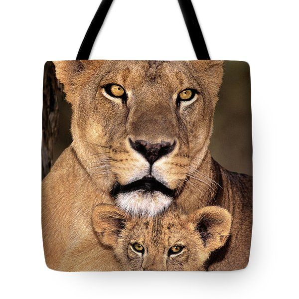 African Lions Parenthood Wildlife Rescue Tote Bag