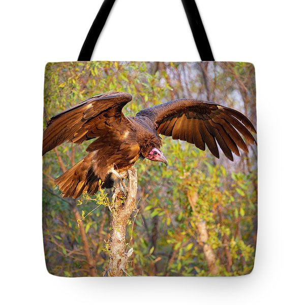 Tote Bag featuring the photograph African Vulture by John Rodrigues