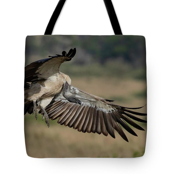 African White-backed Vulture Tote Bag