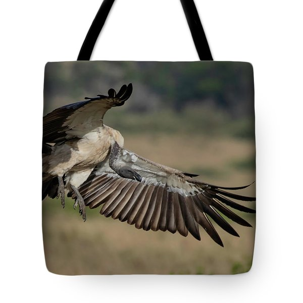 Tote Bag featuring the photograph African White-backed Vulture by Thomas Kallmeyer