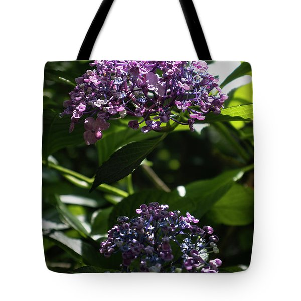 Afternoon Garden View Tote Bag