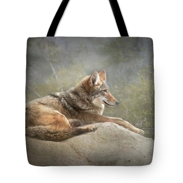 Tote Bag featuring the photograph Afternoon Repose by Teresa Wilson