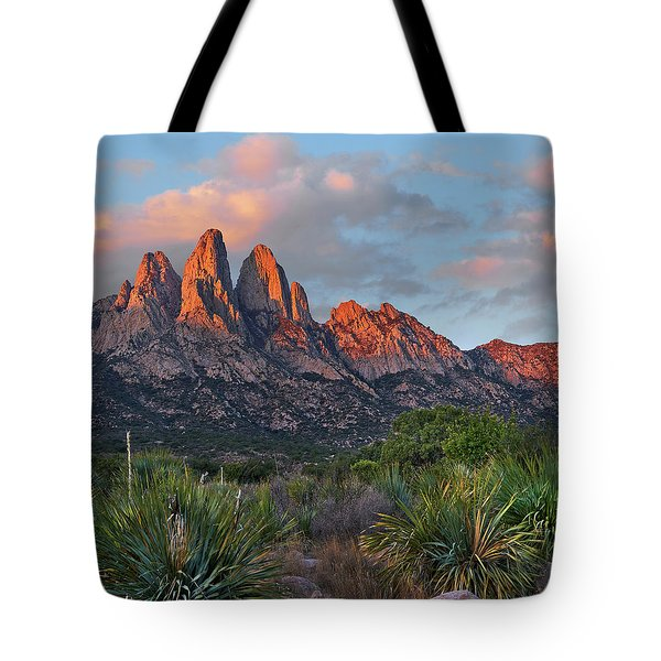 Organ Moutains, Aguirre Spring  Tote Bag