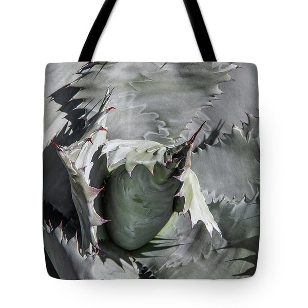 Tote Bag featuring the photograph Agave Universe by Lon Dittrick