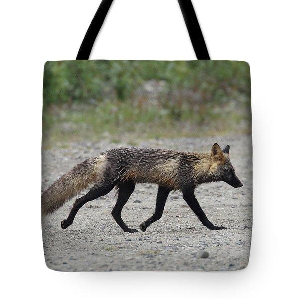 Alaskan Cross Fox Tote Bag